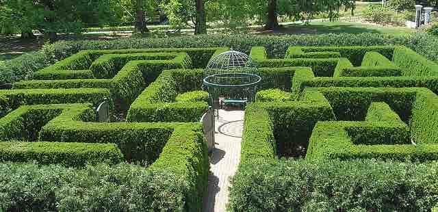 Town Square Hedge Maze